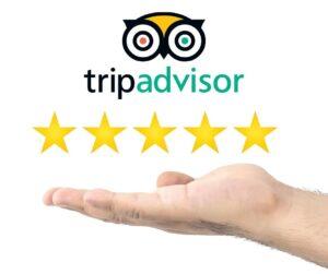 trip advisor reviews